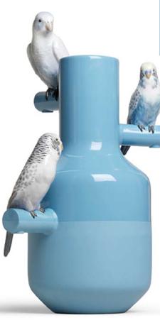 The Parrots Party