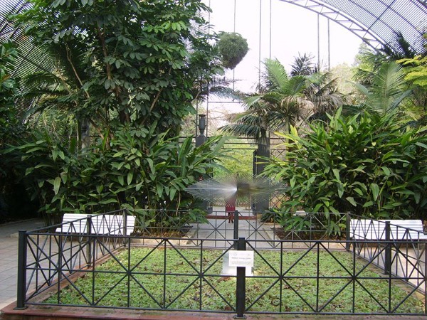 Jardín Botánico de Valencia. Foto: G.B.
