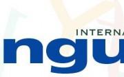 lenguaje internacional