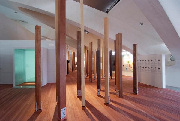Bosque de tablones de Maderas y Chapas Blanquer en el Museo Príncipe Felipe
