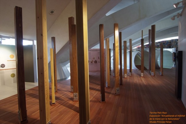"Tarima de palo rojo en la exposición ""Amueblando el Hábitat"" de la Ciutat de les Arts i les Ciències"