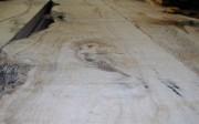madera-aserrada-de-olivo