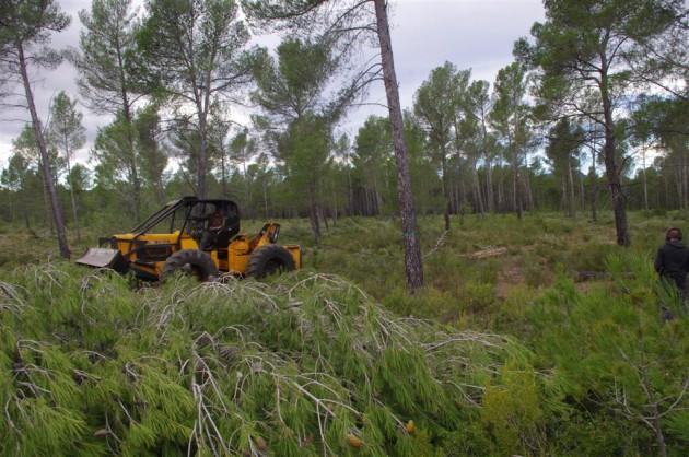 desembosque-skidder-biomasa-biopellets-aidima