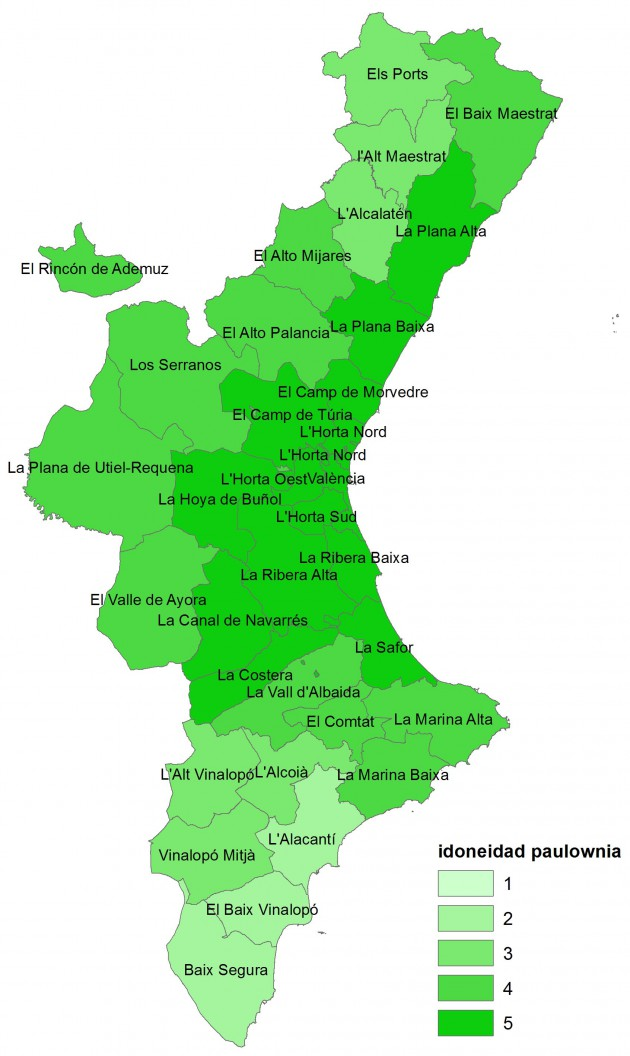 - Mapa de idoneidad de la paulownia en la Comunidad Valenciana (1: menor idoneidad; 5: mayor idoneidad.