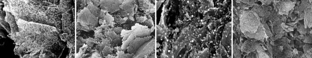 imagen proyecto nanosurf