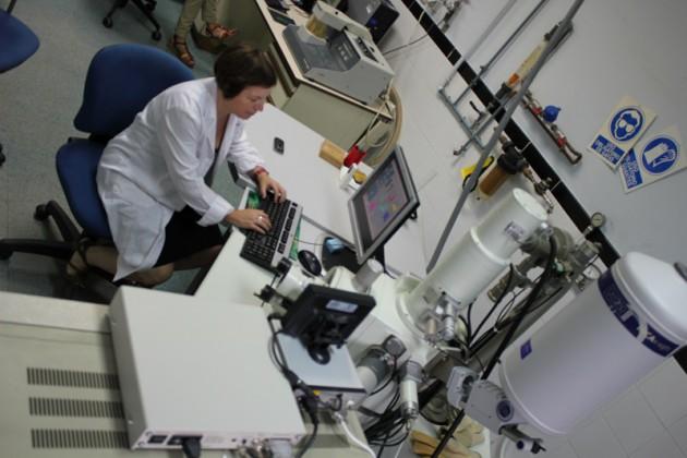 Protocolos experimentales