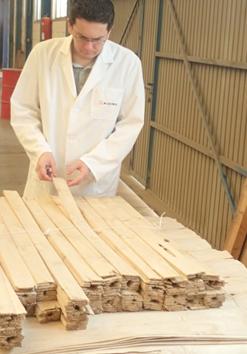 Proyecto proinnomadera maderas