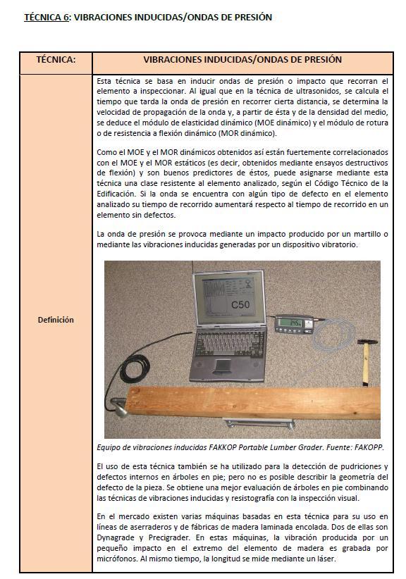 Imagen 5. Primera hoja de la ficha de la técnica de vibraciones inducidas/ondas de presión.